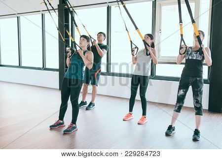 Professional Trx Trainer Training Pull Up