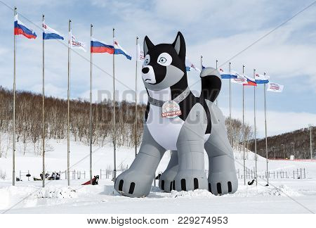 Kamchatka Peninsula, Russia - March 1, 2018: 10-meter Inflatable Pneumatic Figure Of Husky Sled Dog