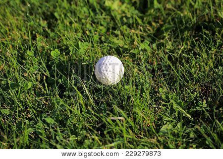 Golf Ball On Sports Golf Course Close-up, Morning Dew On Grass In Summer, On Blurred Background