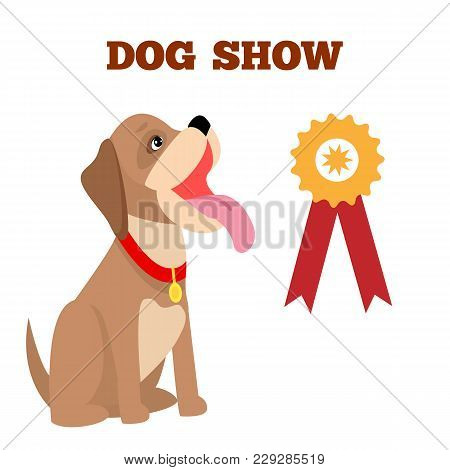 Dog Show Colorful Banner, Vector Illustration, Pretty Doggy With Red Dog-collar, Isolated On White B