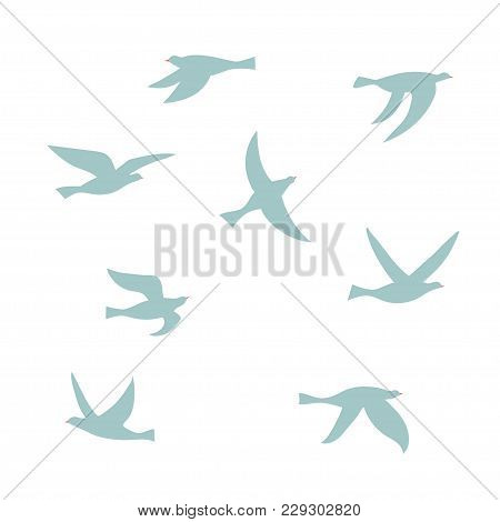 Vector Silhouette Of A Flock Of Birds. Set Of Isolated Flat Contours Of Flying Birds. Design Element