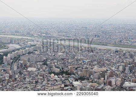 Tokyo And Tourist Routes From The Height Of Bird Flight