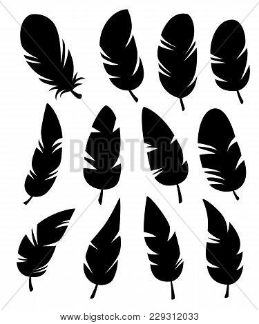 Feathers Of Different Shapes Vector Set In A Flat Style. Icons Feathers Isolated On A White Backgrou