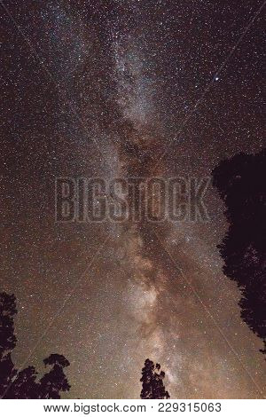 Milky Way And Silhouette Of Trees In The Mountains. Night Landscape