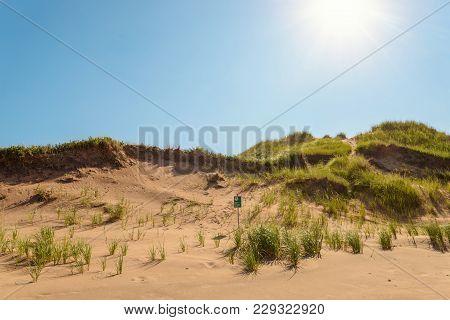 Brackley Beach Sand Dunes (prince Edward Island, Canada)