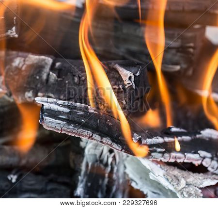 Burning Wood In A Brazier . Photos In The Studio