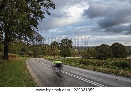 Cyclist In Beautiful Richmond Park Landscape In Autumn