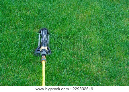 Sprinkler For Watering On The Green Lawn