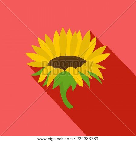 Blossoming Sunflower Icon. Flat Illustration Of Blossoming Sunflower Vector Icon For Web