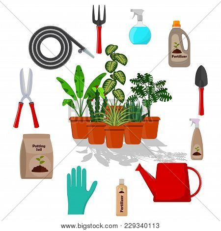 Potted Plants Surrounded By Garden Tools. Set Of Gardening Tools, Potting Soil, Various Fertilizers