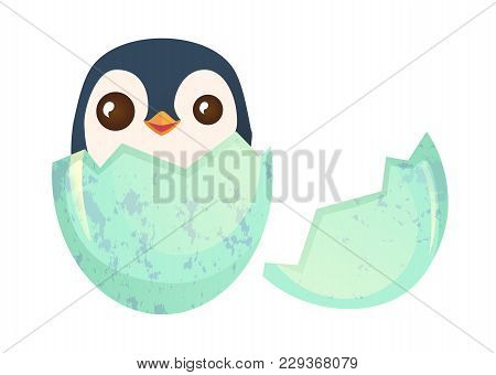 Egg Hatching. Cute Easter Chick In Eggshell Illustration
