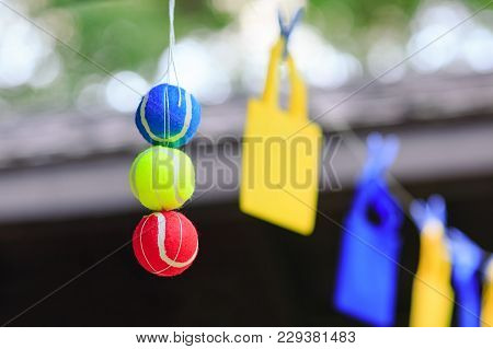 Set Of Tennis Balls Hanging From The Thread. Isolated In Tricolor Colors: Blue, Yellow, Red