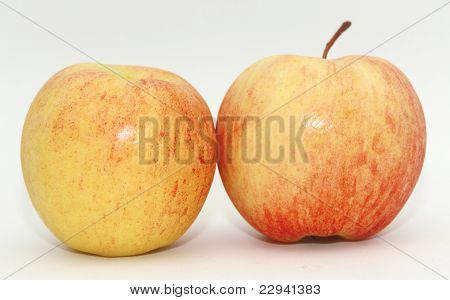 The apple.