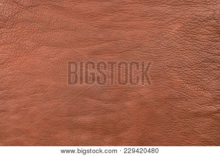 Coarsely Granular Texture Brown Natural Leather. Brown Leather, Texture Close-up. View From Above