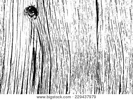 Realistic Wooden Texture Background. Grunge Wood Pattern. Monochrome Textured Bark Log Tree. Vector
