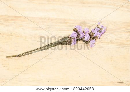 Close Up Of  Single Purple Statice Flower Background Use For Decoration On Brown Wooden
