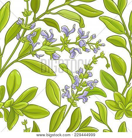 Sage Branch  Vector Pattern On White Background