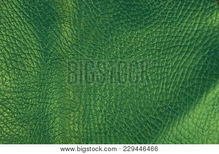 Green Natural Leather Texture Background, Closeup, Macro