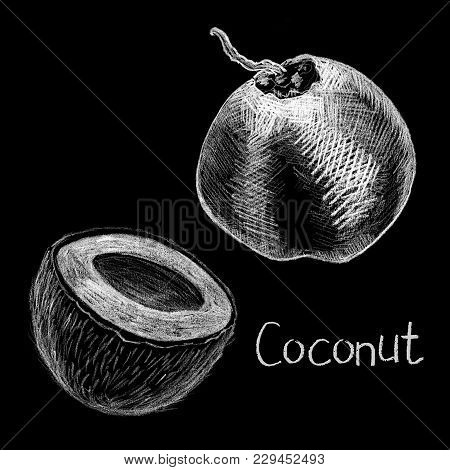 Coco Nuts By White Chalk On Black Background. Coconut Hand-drawn Illustration. Coco Whole And Half O