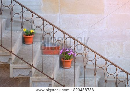 Side View Of Concrete Staircase And Steel Handrail In The Middle With Flowers In Flowerpots