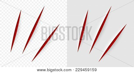 Vector Realistic Red Cut With A Office Knife On Paper Sheet Isolated. Claws Animal Scratches On Tran