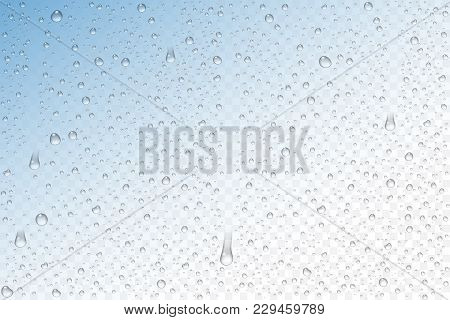 Vector Realistic Water Drops Condensed On Transparent Background. Rain Droplets Without Shadows For