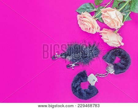 Sex Toys (fur Cuffs And Nipple Clamps) And A Bouquet Of Delicate Roses Are On A Purple Background. I