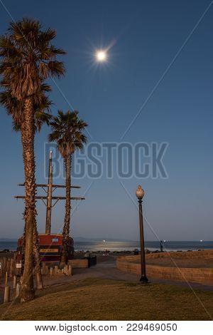 Moonlit Morning Illuminates Palm Trees And Ship Masts On California Beach.