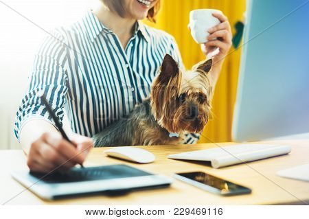 Graphic Designer Working At Office With Digital Stylus On Background Monitor Computer, Smile Hipster