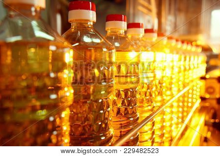 Sunflower Oil. Line For The Production And Bottling Of Refined Oil From Sunflower Seeds. Conveyor Of