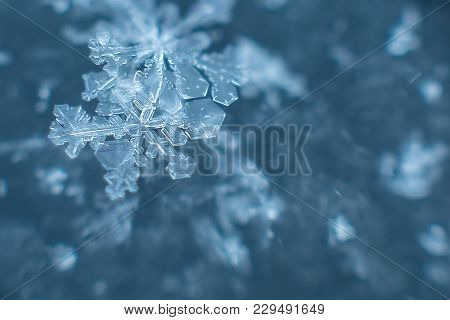 Natural Snowflakes On Snow, Photo Real Snowflakes