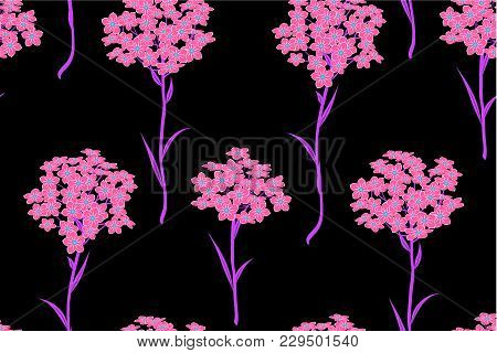 Seamless Pattern With Bunches Of Pink Flowers Forget-me-not On Black Background. Vector Illustration