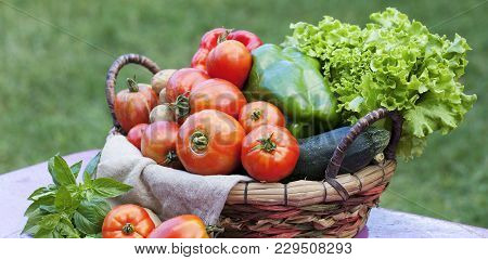 Vegetables On A Table In A Garden Under The Sunlight