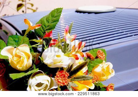 Flowers Near Outdoor Air Conditioning Unit Daytime