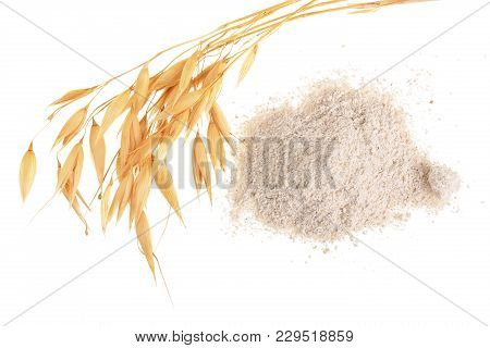 Oat Spike With Flour Isolated On White Background. Top View. Flat Lay .