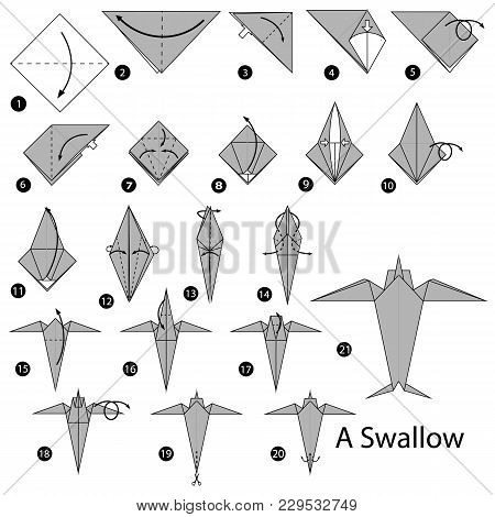 Step By Step Instructions How To Make Origami A Swallow