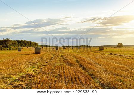 Scenic View Of Hay Stacks On Sunny Day (prince Edward Island, Canada)