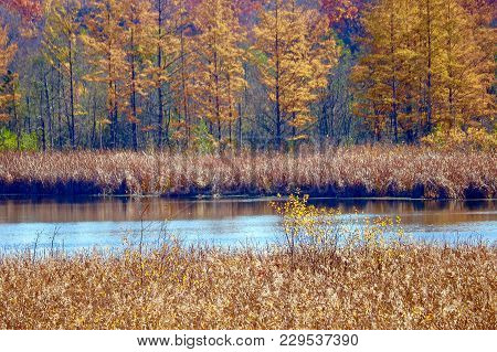Colorful Autumn Landscape On A Lake With Reflections In The Water