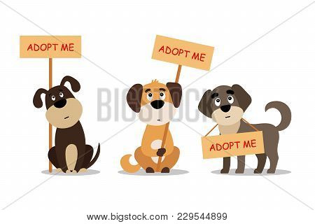 Set Of Sitting And Standing Dogs With A Poster Adopt Me. Dont Buy - Help The Homeless Animals Find A