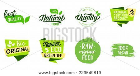 Best Quality Food Lettering Set. Premium Quality, Green Life, Organic Products. Calligraphy, Handwri