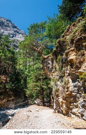 Hiking Path In Samaria Gorge In Central Crete, Greece