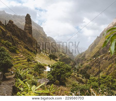 Picturesque Canyon Ribeira Da Torre Covered With Lush Vegetation. Cultivation On Steep Terraced Hill