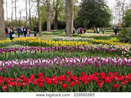 Lisse, Netherlands - April 19, 2017: Visitors At The Keukenhof Garden In Lisse, Holland, Netherlands