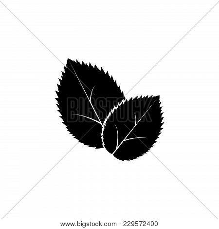 Leaf Icon, Vector Illustration. Black On White Background