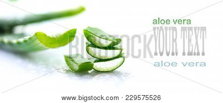 Aloe Vera closeup. Sliced Aloevera natural organic renewal cosmetics, alternative medicine. Organic Skin care concept. On white wooden background.