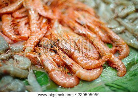 Fresh Seafood Raw Crustacean Prawn - Healthy Food