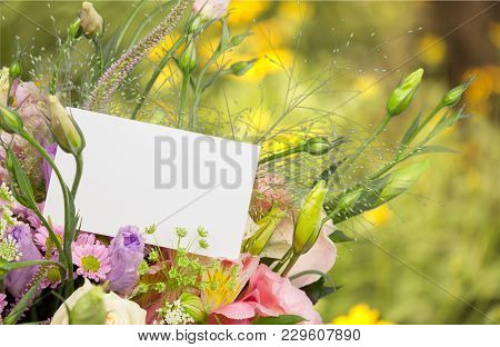 Flowers Bouquet Green Color Background Colorful Nobody