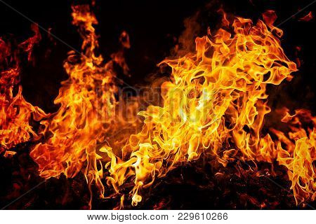 Big Fire Flames On Black Background, Close Up