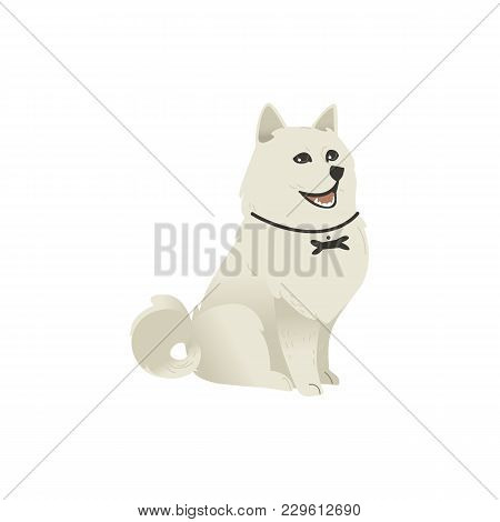 Cute Fluffy Little Dog Sitting Straight, Three Quarters Full Length Portrait, Flat Cartoon Vector Il