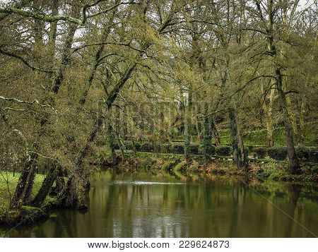 Rural Landscape Of Trees On The Shore Of The River Arnoia, Allariz, Galicia. Spain